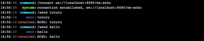Websocket server echo