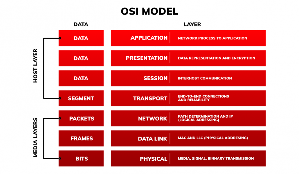 Networking basics OSI model